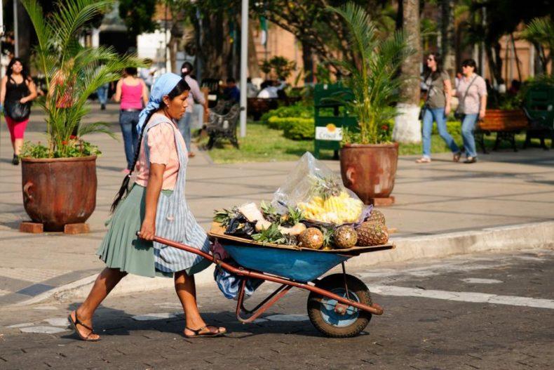 Fresh fruits Sucre - Raw foods Bolivia