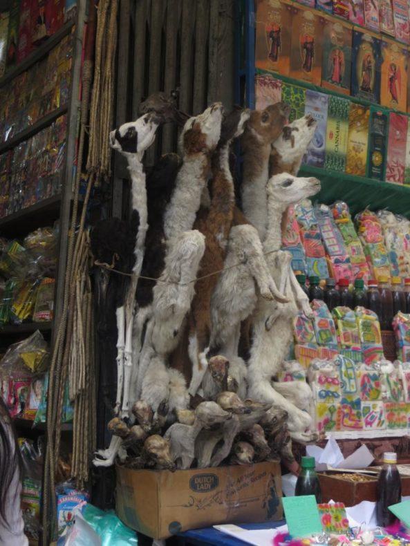 The La Paz Witches Market-Llama foetuses