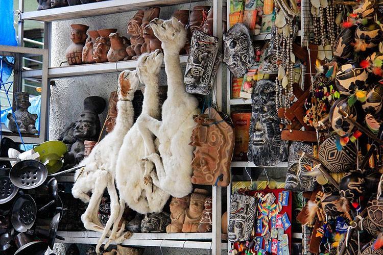 Mercado das Bruxas em La Paz