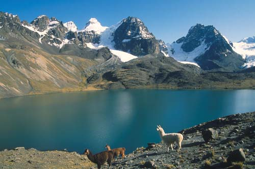 Lago Tuni - Best Treks From La Paz