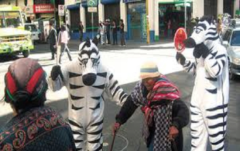 Bolivian Traffic Zebras La Paz - People dressed as zebras helping old women on the streets