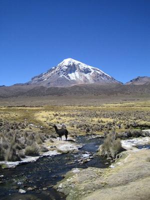 Sajama national park bolivia - Volcano