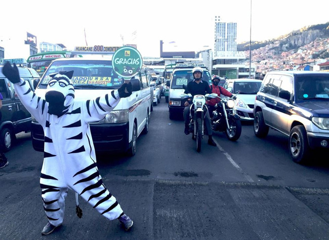 Bolivian Traffic Zebras La Paz - person dressed as zebra controlling the traffic on street