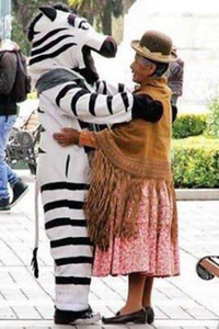 Bolivian Traffic Zebras La Paz - person dressed as zebra hugging woman